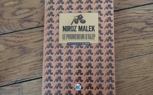 Le promeneur d'Alep - Niroz Malek